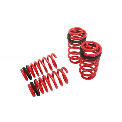 Megan Racing MR-LS-LCT200 Coilover Lowering Spring